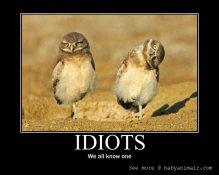 idiots-motivational-poster